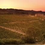 Agriturismo Borgo Tollena San Gimignano
